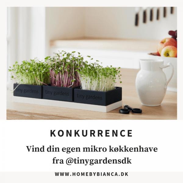tiny gardens